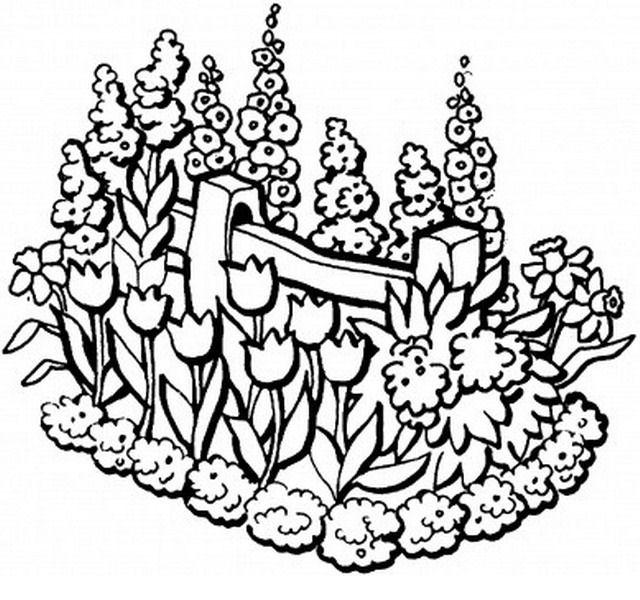 Disegno giardino giardini 2 misti da colorare for Disegno giardini