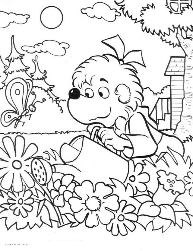 Disegno giardino giardini 4 misti da colorare for Disegno giardini
