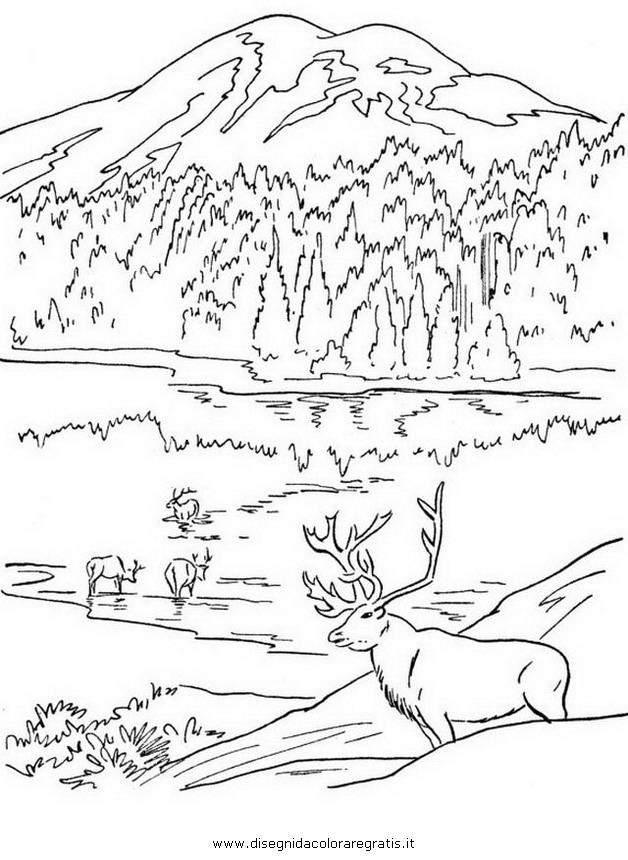 Disegno montagna 24 misti da colorare for Disegni da colorare per adulti paesaggi