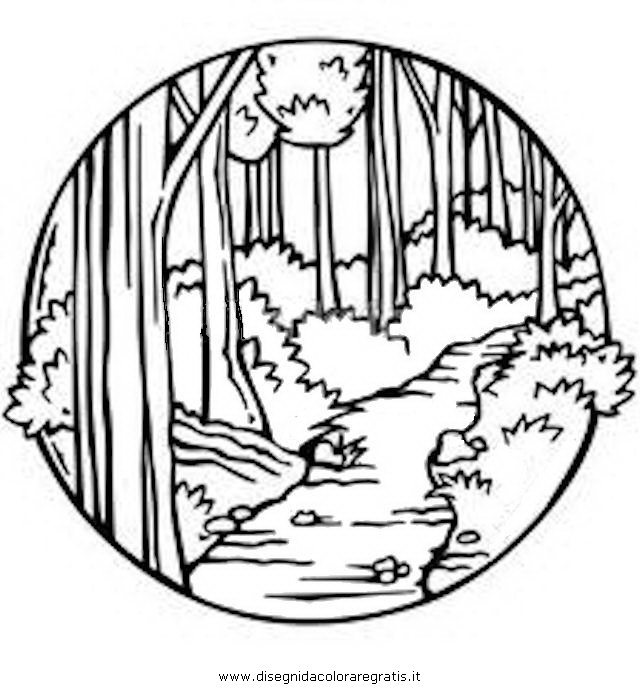 misti/paesaggi/sentiero_4.JPG