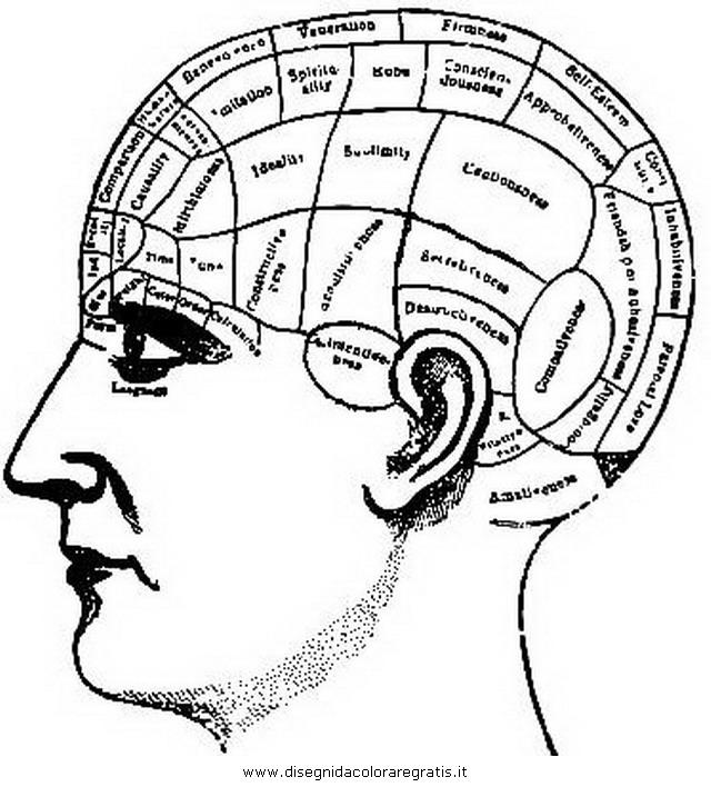 misti/richiesti08/psicologia_2.JPG