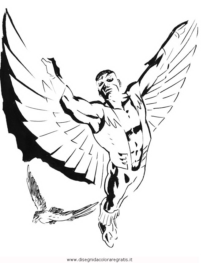 misti/richiesti11/falcon_2.JPG