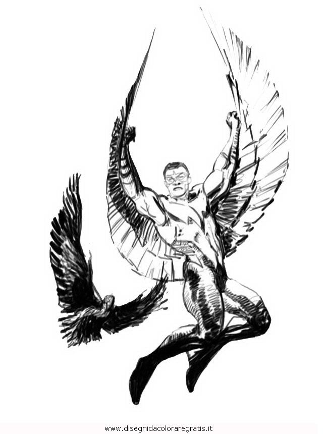 misti/richiesti11/falcon_3.JPG