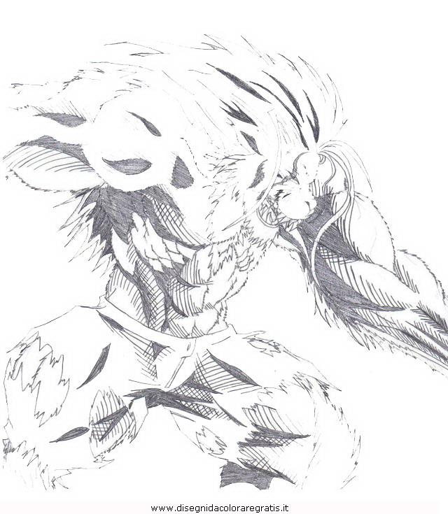 misti/richiesti11/lionman_01.JPG