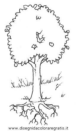 natura/alberi/piante_alberi_02.JPG