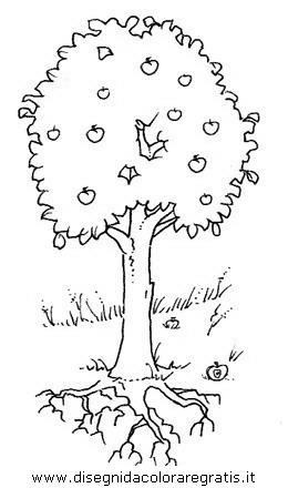 natura/alberi/piante_alberi_03.JPG