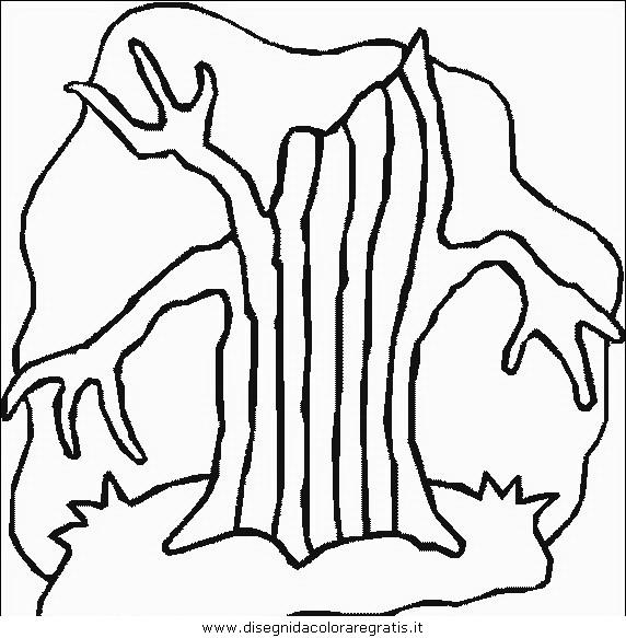natura/alberi/piante_alberi_22.JPG
