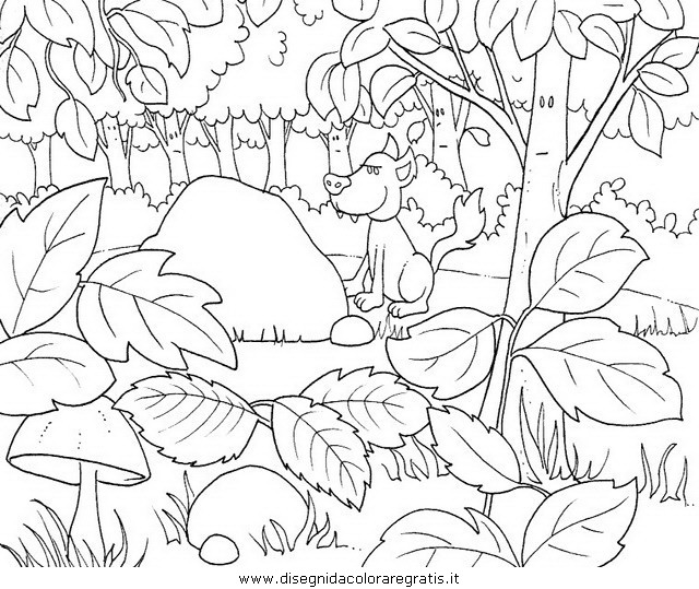 Disegno Piante Alberi 23 Categoria Natura Da Colorare