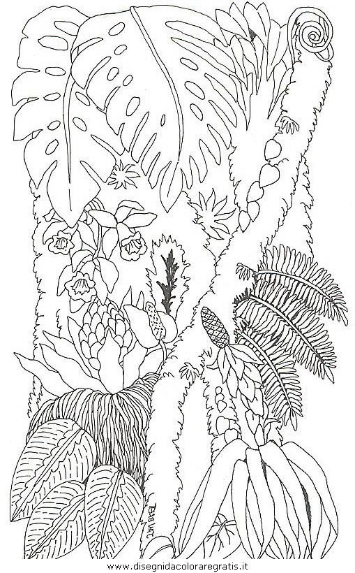 natura/alberi/piante_alberi_32.JPG