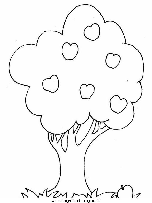 natura/alberi/piante_alberi_39.JPG