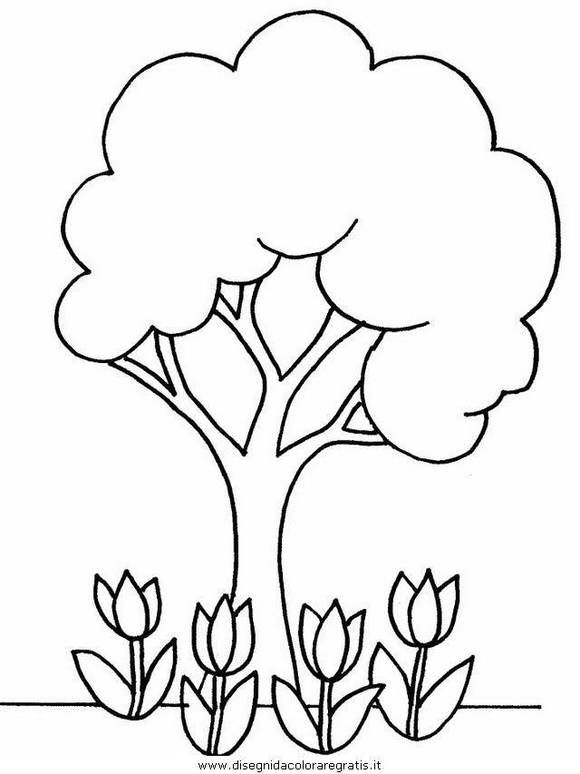 natura/alberi/piante_alberi_40.JPG