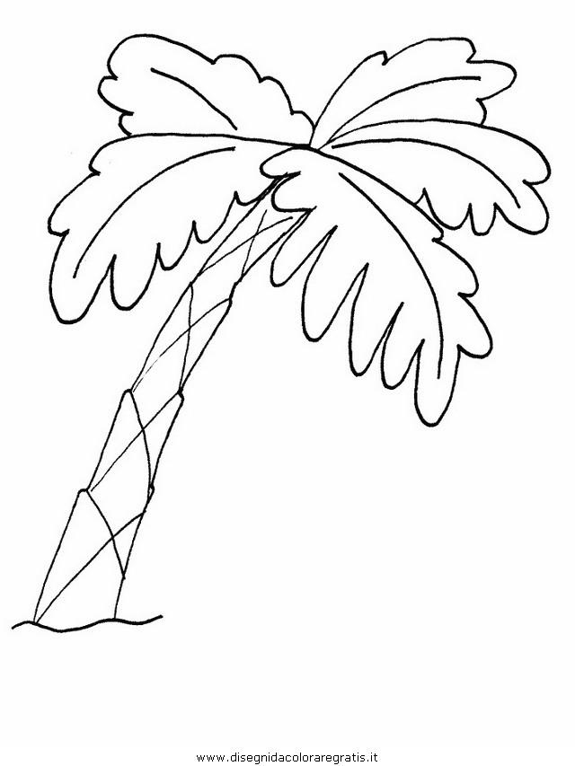 natura/alberi/piante_alberi_44.JPG