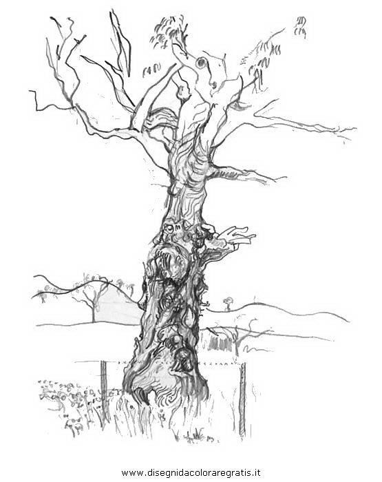 natura/alberi/tronco_0.JPG