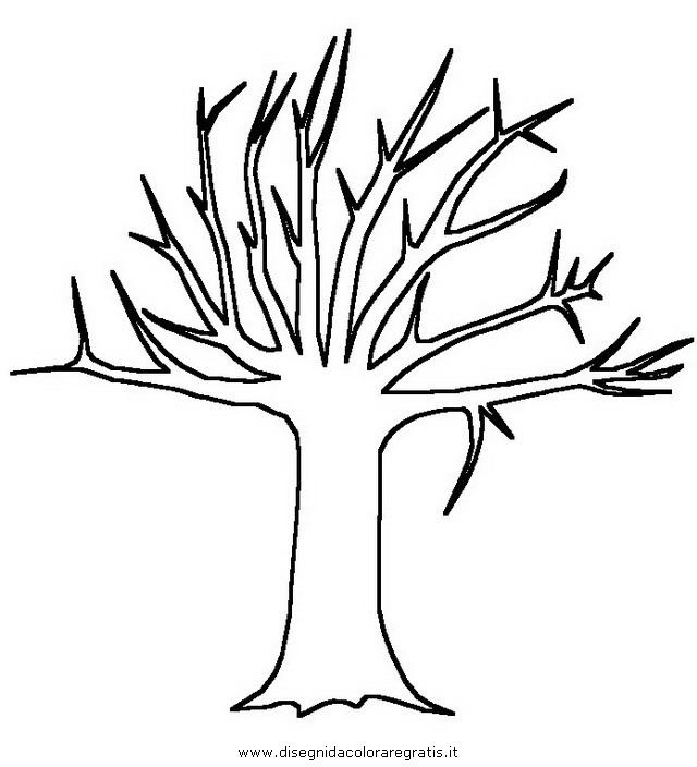 natura/alberi/tronco_2.JPG