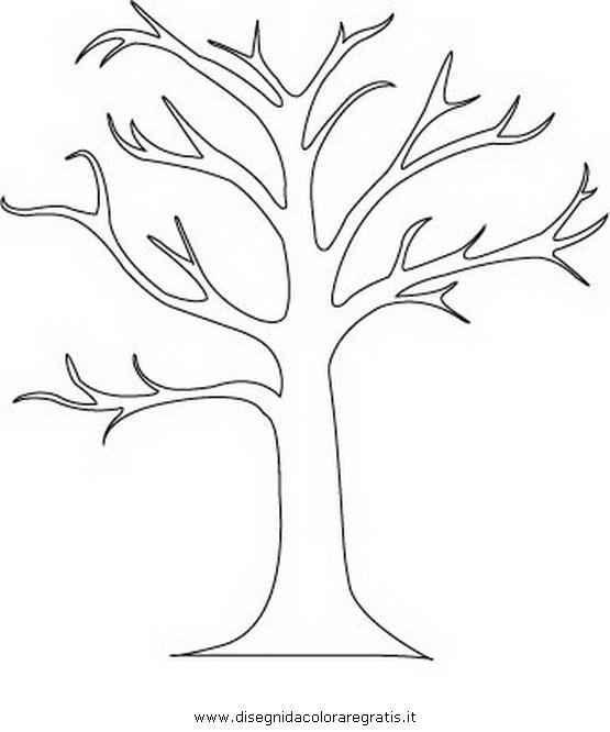 natura/alberi/tronco_4.JPG
