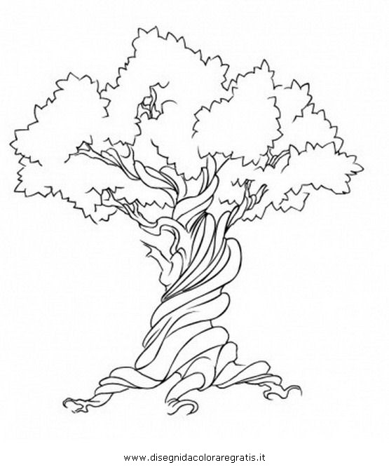 Disegno Tronco_5 Categoria Natura Da Colorare