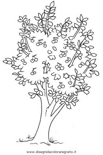 Disegno ciliegio2 categoria natura da colorare - Immagini da colorare della natura ...