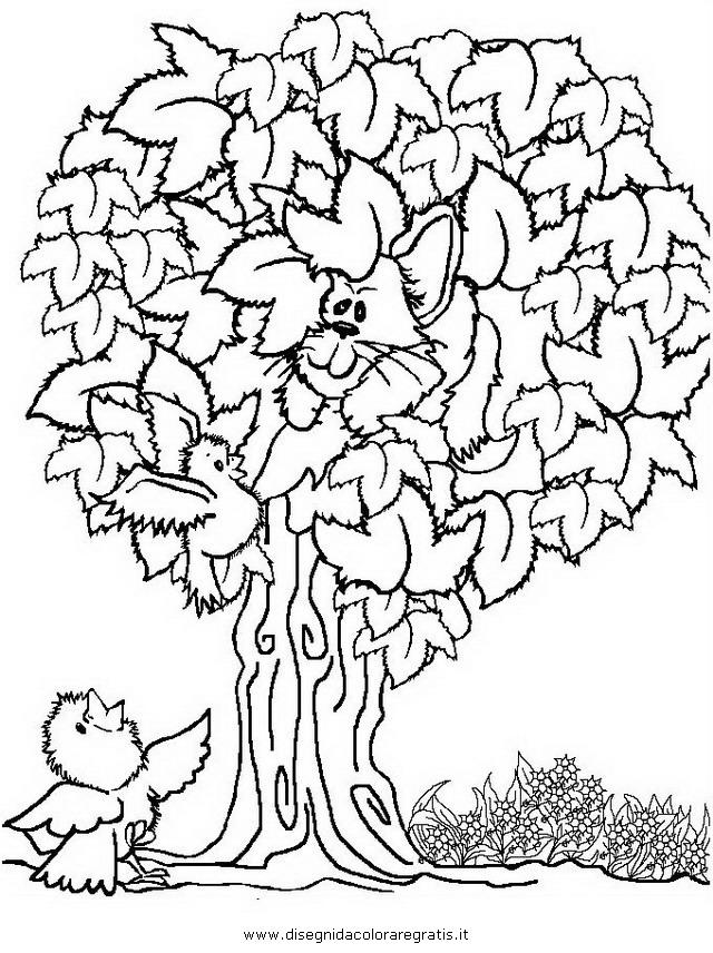 natura/alberi_speciali/sicomoro.JPG