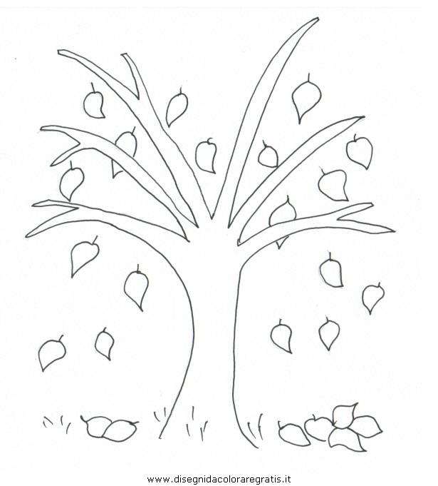 natura/autunno/autunno005.JPG