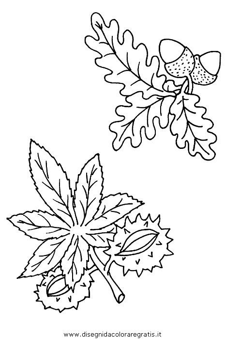 natura/autunno/natura_autunno_08.JPG