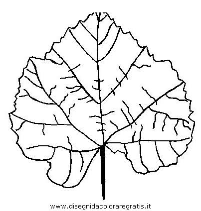 natura/autunno/natura_autunno_foglie_22.JPG
