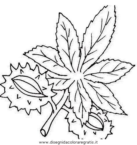natura/autunno/natura_autunno_foglie_37.JPG