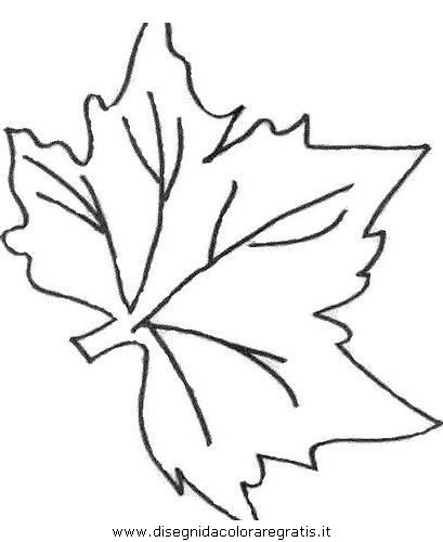 natura/autunno/natura_autunno_foglie_39.JPG