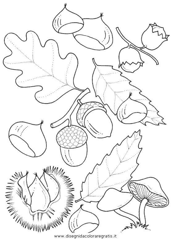 Disegno Natura Autunno Foglie 41 Categoria Natura Da Colorare