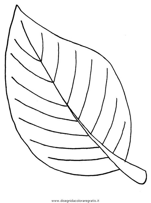 Top Disegno natura_autunno_foglie_42 categoria natura da colorare RX63