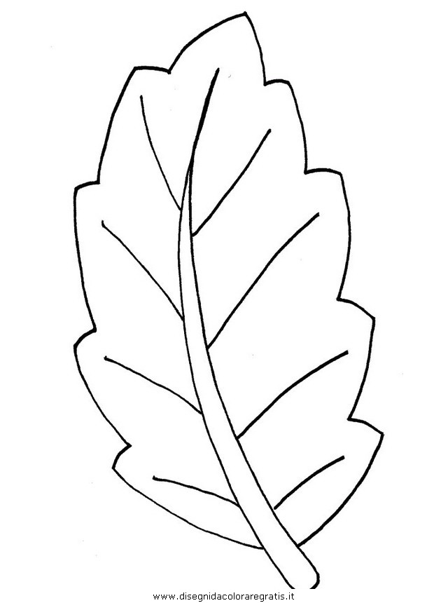 natura/autunno/natura_autunno_foglie_43.JPG