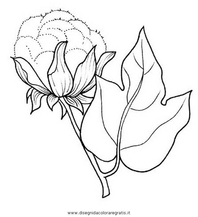 Disegno cotone 2 categoria natura da colorare for Primule da colorare