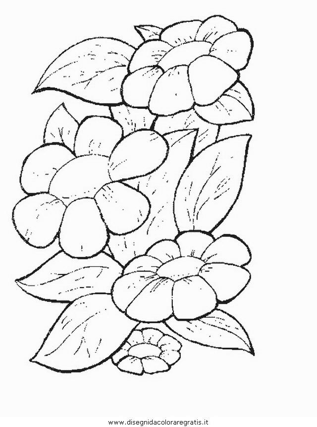 natura/fiori/fiore_fiori_189.JPG