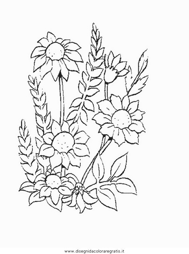 natura/fiori/fiore_fiori_194.JPG