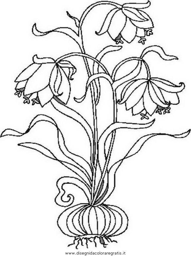 natura/fiori/fiore_fiori_199.JPG