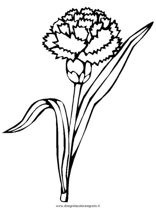natura/fiori/fiore_fiori_201.JPG
