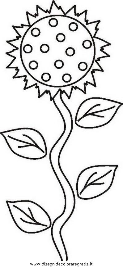 natura/fiori/fiore_fiori_213.JPG