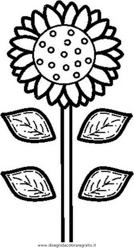 natura/fiori/fiore_fiori_216.JPG
