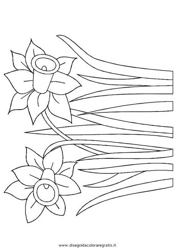 natura/fiori/fiore_fiori_225.JPG