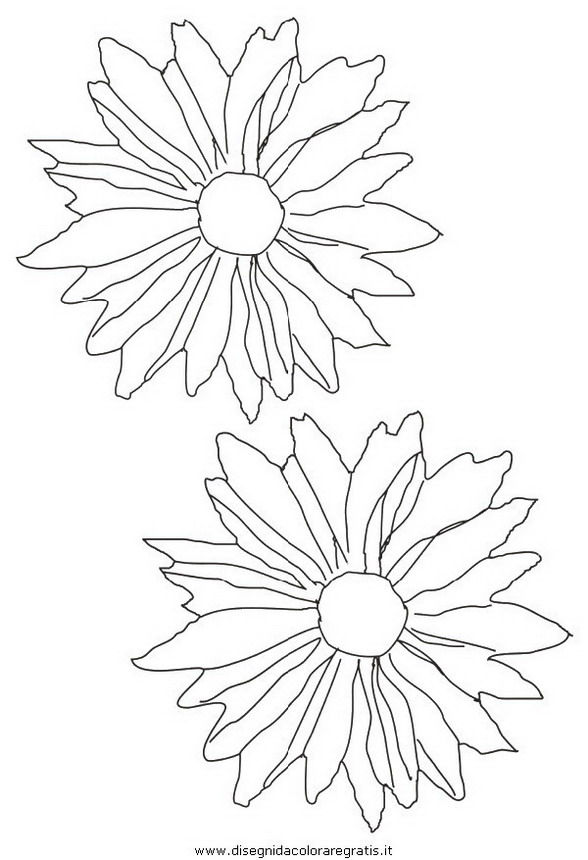 natura/fiori/fiore_fiori_226.JPG