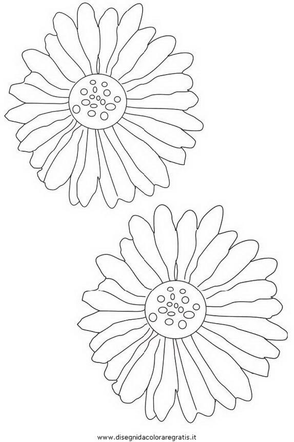 natura/fiori/fiore_fiori_227.JPG