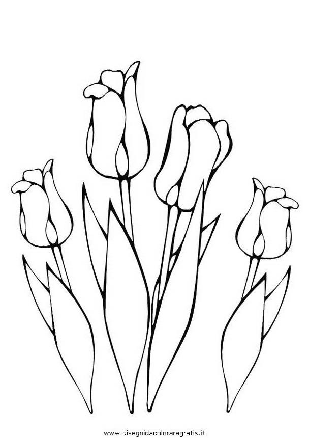 natura/fiori/fiore_fiori_229.JPG