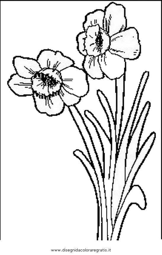 natura/fiori/fiori_fiore_008.JPG