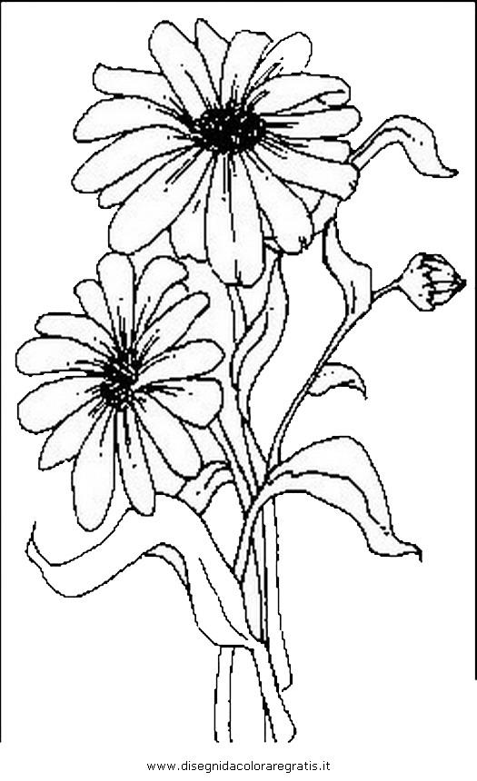 natura/fiori/fiori_fiore_016.JPG