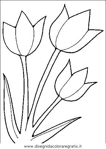 natura/fiori/fiori_fiore_038.JPG