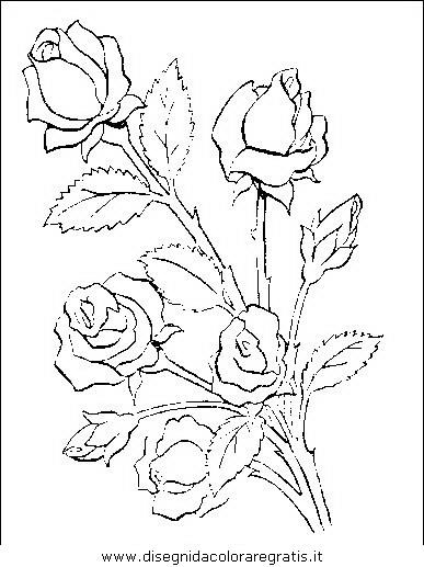 natura/fiori/fiori_fiore_039.JPG