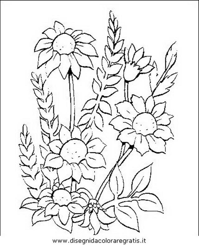natura/fiori/fiori_fiore_050.JPG