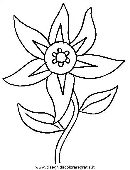 natura/fiori/fiori_fiore_061.JPG