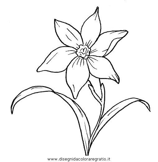 Top Disegno fiori_fiore_063 categoria natura da colorare EZ53