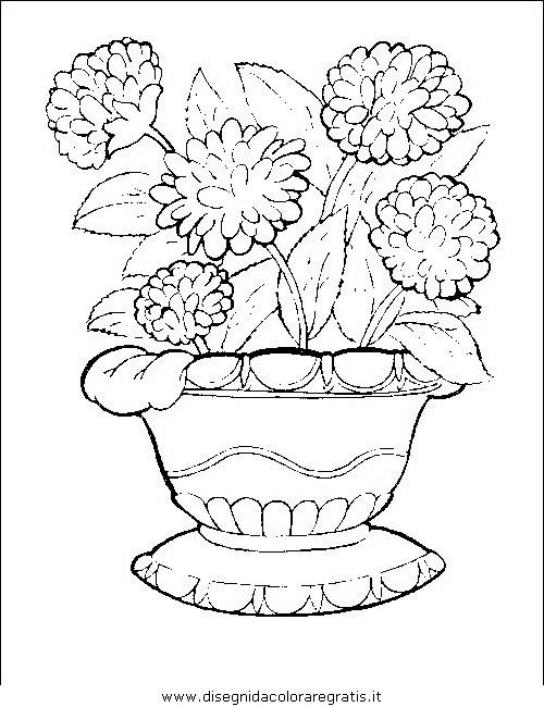 natura/fiori/fiori_fiore_069.JPG