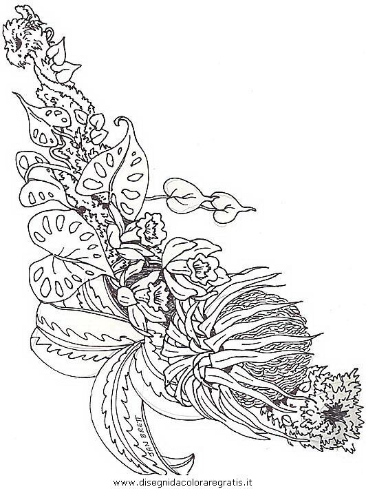 natura/fiori/fiori_fiore_090.JPG